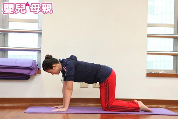 四足跪姿式產後瘦小腹運動
