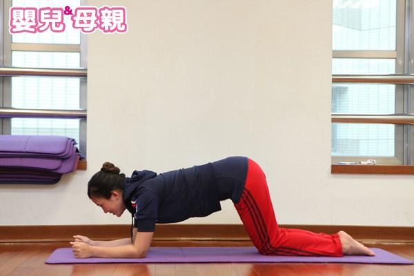 板式產後瘦小腹運動-1